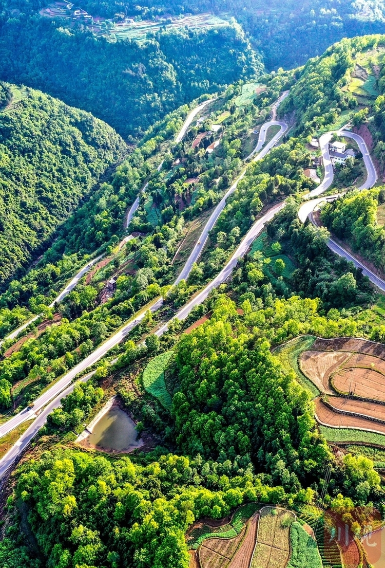 (转载)巴中通江:盘山路连乡村,促进山村经济发展