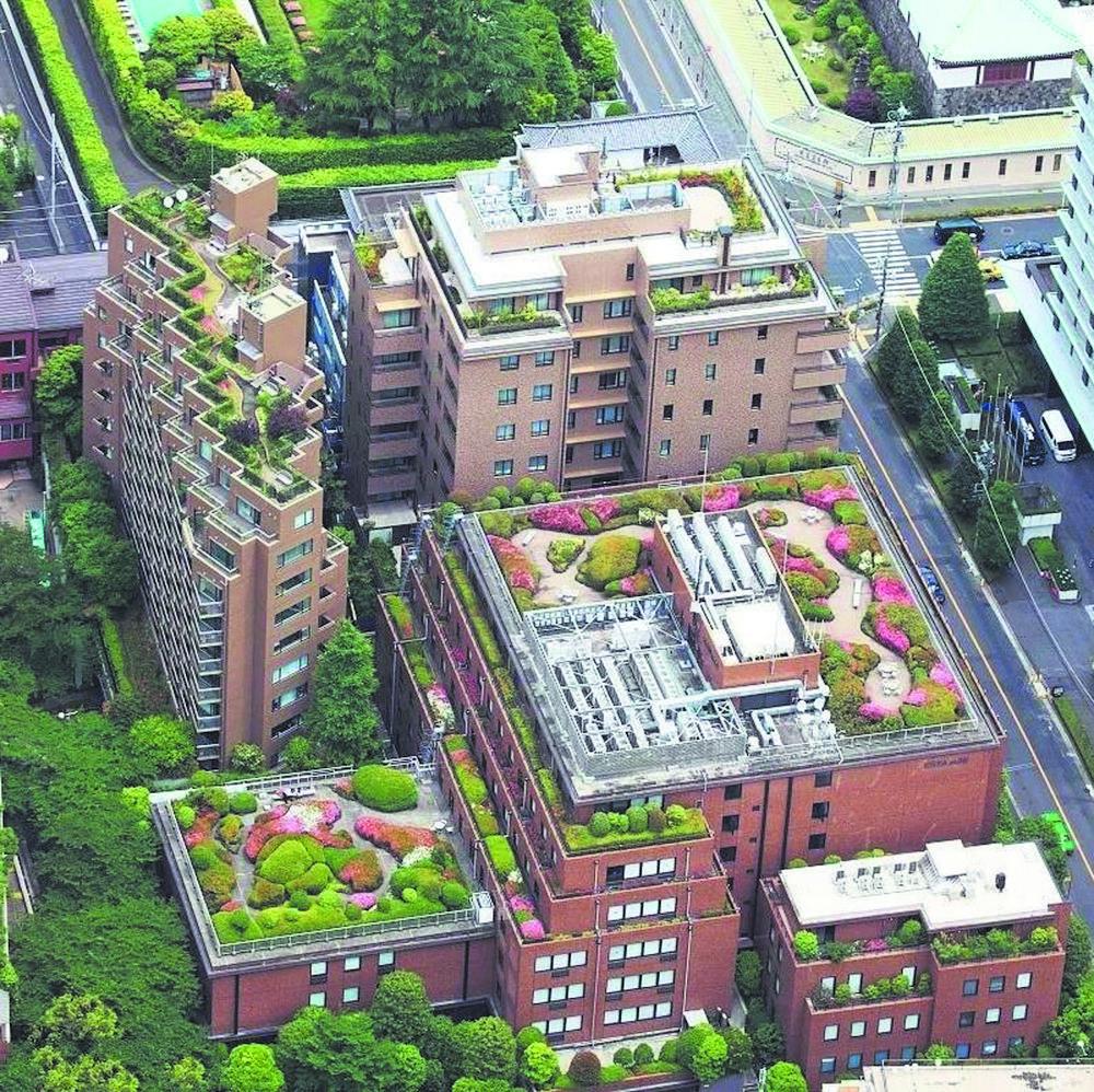 打造具有标志性的楼顶景观节点工程和视觉中心 图片由市公园城市管理局提供